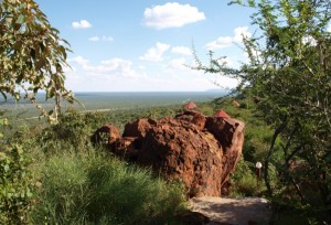 Waterberg Plateau Region