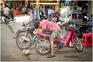 Ein typisches Bild in Kambodscha. Das Moped für alle Situationen.