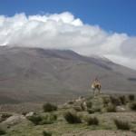 Peru Rundreise: Unvergessliche Entdeckungstour im geheimnisvollem Land der Inkas
