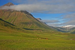 Trogtal Svarfaðardalur - Nord-Island