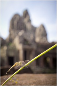 aufgenommen vor dem Bayon Tempel