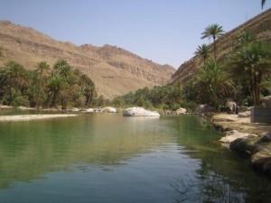 Oman Oase Singlereisen