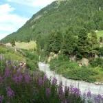 E 5 - Alpenüberquerung und Via Alpina