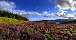 Wicklow Mountains Irland Mietwagenrundreise
