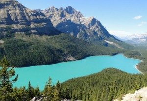 Der smaragdblaue Peyto Lake im Banff Nationalpark