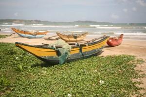Fischerboote an der Südküste von Sri Lanka