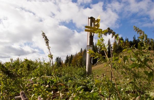 auf dem Riffelsattel (1.284 m)