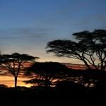 Südafrika Hochzeitsreise – entlang der Gardenroute