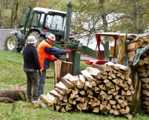 Holzarbeit auf dem Größbach Hof