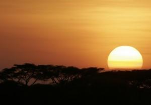 Hochzeitsreisen Tansania