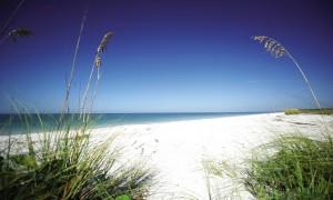 Ferienhaus Florida, der Strand am Lovers Key State Park
