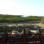 Urlaub in Senegal und das Sine saloum delta erkunden