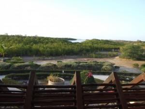 Blick in das Sine Saloum Delta