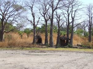 Umgebung der Keur Saloum Lodge