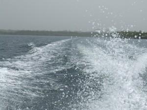 Angelausflug im Sine Saloum Delta