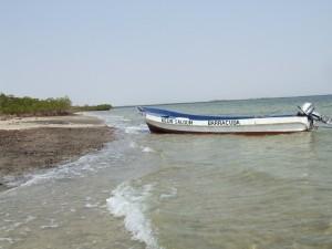 Einsame Inseln im Sine Saloum Delta