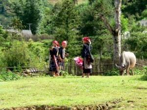 Authentisches Vietnam