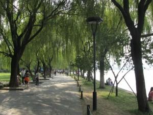 das Ufer des Westsees