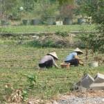 China individuell erleben - Guilin, eine Station auf unserer Rundreise
