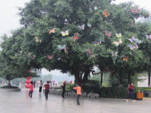 ein Baum voller Schmetterlinge