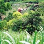 Wanderreisen auf Sai Nocolau - Kapverden