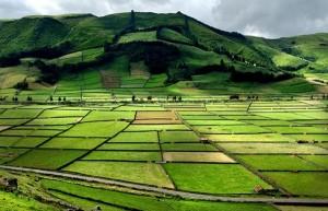 Azoren-Terceira