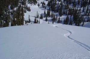 Tree Skiing Kanada