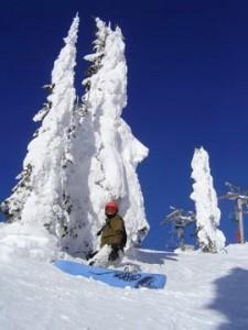 Skireise durch Kanada, Snowboard und Champagne Powder