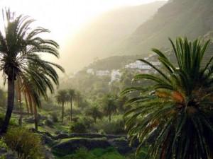 Urlaub für Singles auf La Gomera