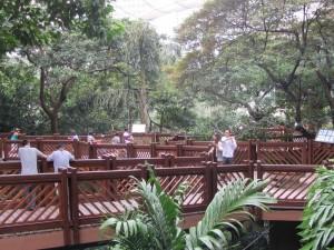 der Hong Kong Park