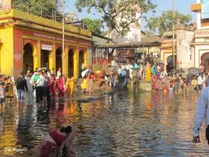 die Pilgerstadt am Godavari-Fluss