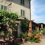 Toskana für Singles: Kochen, Wein & Kultur