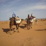 Marokko - Marrakesch und unsere Wüstenreise mit Kamel Trekking