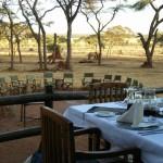 Unsere Tansania Safari