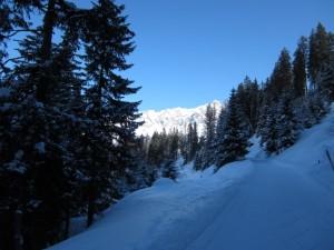 Impression vom Skifahren in der Schweiz