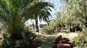 Die Wabi-Lodge am Waterberg