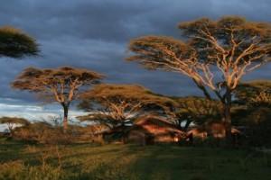 Gemütliche Gästefarm in Tansania