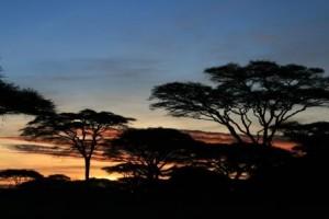 Unsere Tansania und Sansibar Reise
