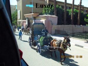 Pferdewagen in Luxor