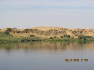 Grünes Ufer am Nil dahinter Wüste
