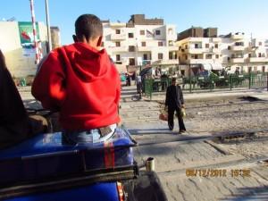 Gemütliche Pferdewagentour in Luxor