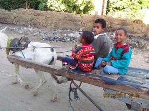Kinder auf Eselgespann