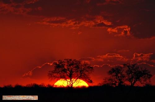 Dramatischer Sonnenuntergang in Simbabwes Hwange Nationalpark