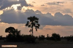 Sonneuntergang im Kazuma Pan Nationalpark
