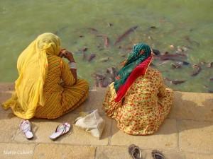 Fische im künstlichen See Gardi Sar