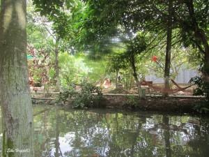 der Garten mit Hängematten