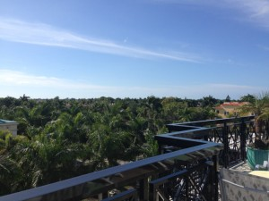 Blick über die Terrasse