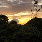 Trekking-Erlebnis im Amazonas Regenwald von Brasilien