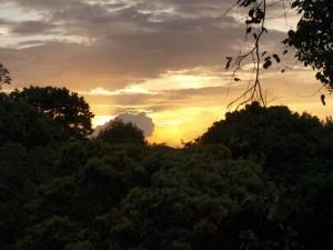 Canopy - Sonnenuntergang über dem Amazonas