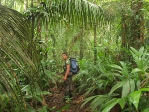 Mit dem Reiseführer im Regenwald von Brasilien